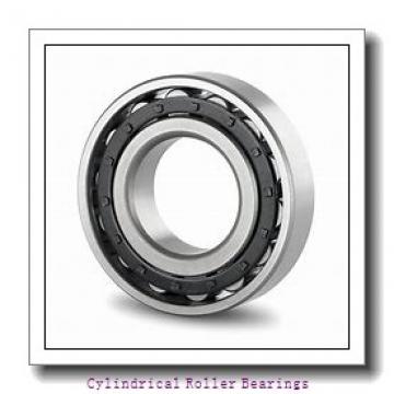 1.969 Inch | 50 Millimeter x 2.565 Inch | 65.146 Millimeter x 1.063 Inch | 27 Millimeter  LINK BELT MR61310  Cylindrical Roller Bearings