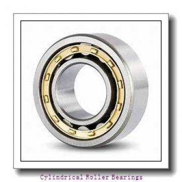 2.559 Inch | 65 Millimeter x 3.294 Inch | 83.675 Millimeter x 1.299 Inch | 33 Millimeter  LINK BELT MR1313  Cylindrical Roller Bearings