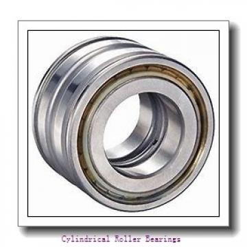 1.378 Inch | 35 Millimeter x 3.15 Inch | 80 Millimeter x 0.827 Inch | 21 Millimeter  LINK BELT MU1307UM  Cylindrical Roller Bearings