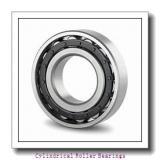 1.969 Inch | 50 Millimeter x 4.331 Inch | 110 Millimeter x 1.063 Inch | 27 Millimeter  LINK BELT MU1310RUMW3  Cylindrical Roller Bearings