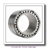 2.362 Inch | 60 Millimeter x 5.118 Inch | 130 Millimeter x 1.22 Inch | 31 Millimeter  LINK BELT MU1312RUMW3  Cylindrical Roller Bearings