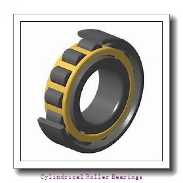 1.181 Inch   30 Millimeter x 2.441 Inch   62 Millimeter x 0.63 Inch   16 Millimeter  LINK BELT MU1206UM  Cylindrical Roller Bearings #2 image