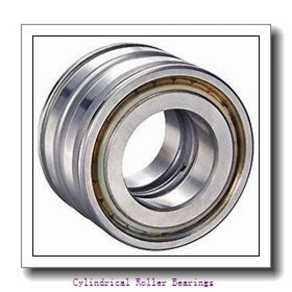 1.575 Inch   40 Millimeter x 2.741 Inch   69.619 Millimeter x 0.709 Inch   18 Millimeter  LINK BELT MU1208X  Cylindrical Roller Bearings #2 image