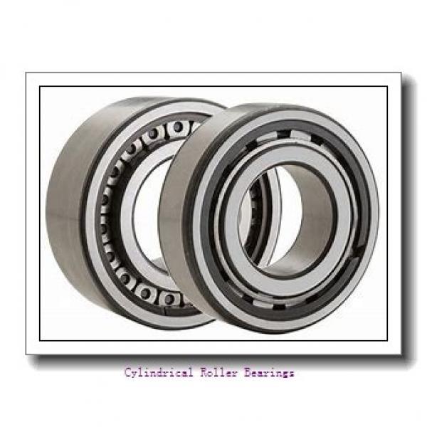 2.362 Inch   60 Millimeter x 4.331 Inch   110 Millimeter x 0.866 Inch   22 Millimeter  LINK BELT MU1212TV  Cylindrical Roller Bearings #1 image