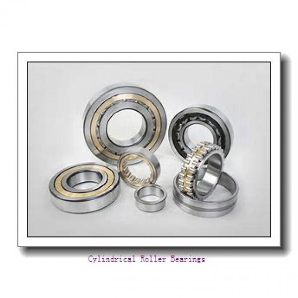 0.984 Inch | 25 Millimeter x 2.047 Inch | 52 Millimeter x 0.591 Inch | 15 Millimeter  LINK BELT MU1205UM  Cylindrical Roller Bearings #1 image